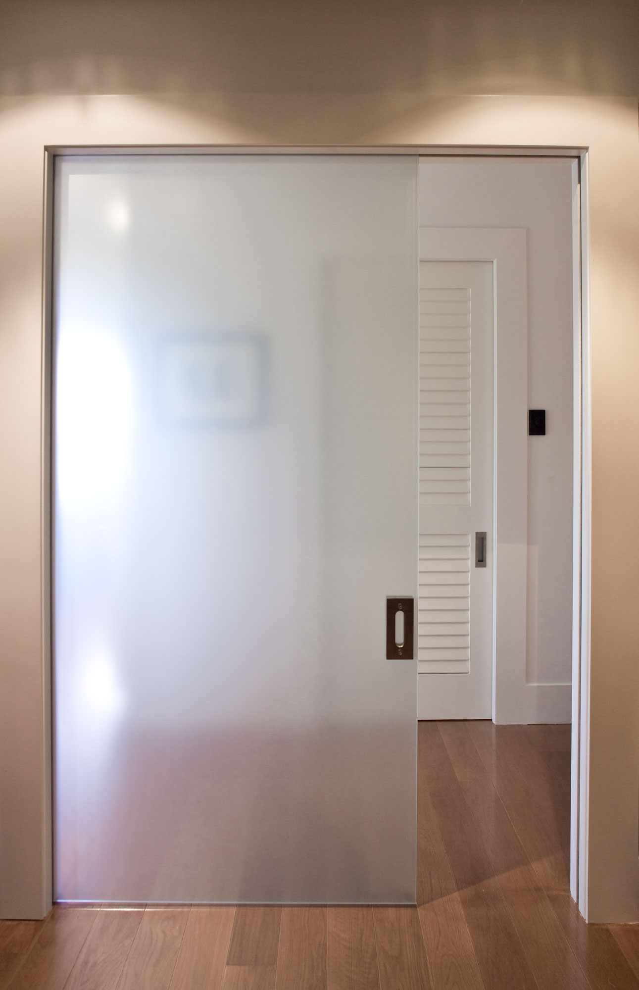 Frameless glass cavity slider doors for Frameless glass doors
